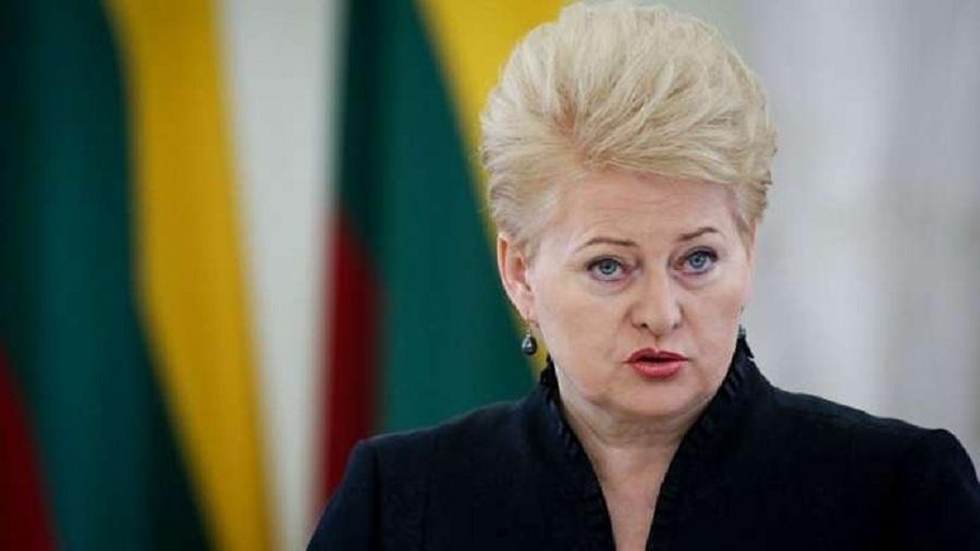 Д Грибаускайте будущее Литвы в руках молодых и творческих  Д Грибаускайте будущее Литвы в руках молодых и творческих людей news tts lt