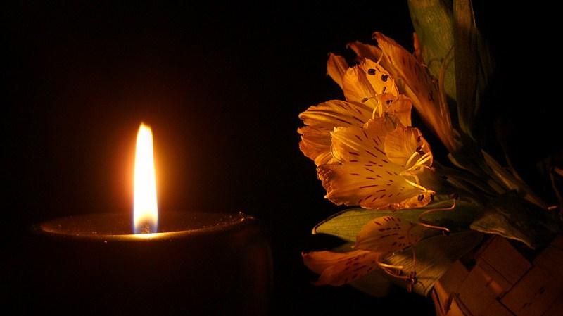 гифы свеча и гвоздики